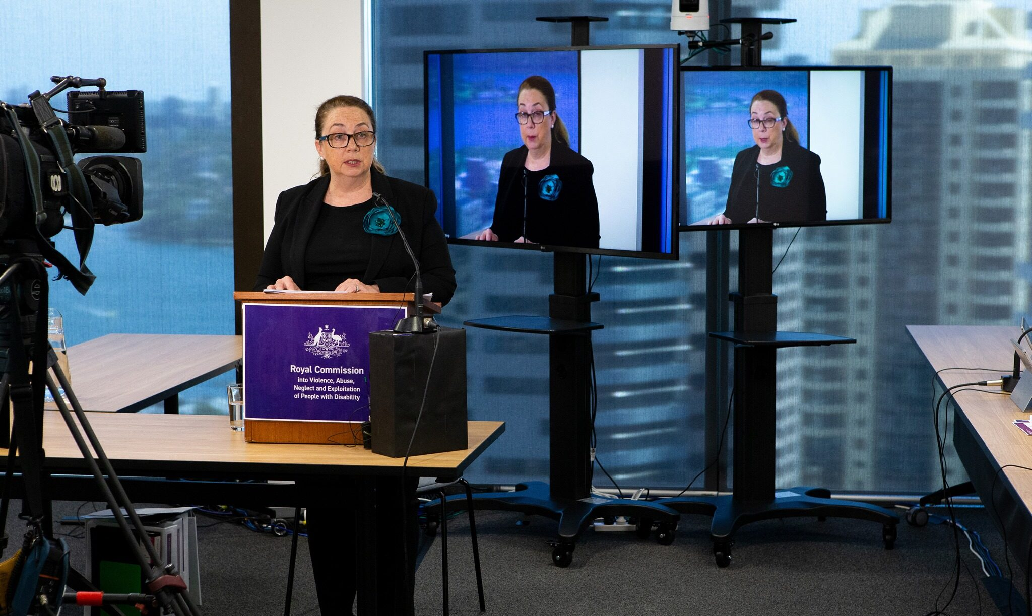 Lawyer speaking at a Disability Royal Commission hearing