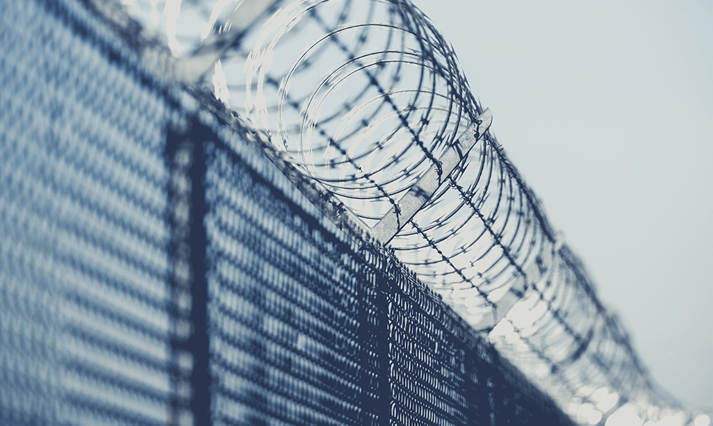 Photo of a barbed wire fence