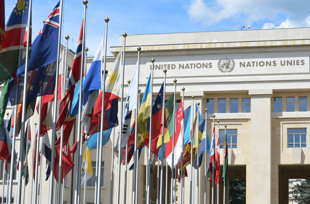 Photo of member state flags outside a United Nations building